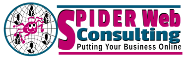 Spider Web Consulting Logo